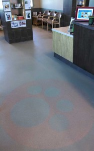 Vet floor finish with paw motive